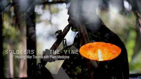 Click here to support The Soldiers of the Vine by Ian Benouis   ayahuasca   Scoop.it