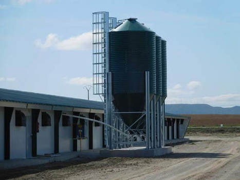 Poultry farm in Zaragoza, Spain   Livestock Equipment News and Trends   Scoop.it