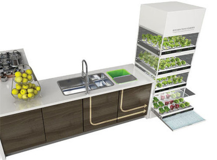 The Nano Garden Lets You Grow Veggies Right in Your Kitchen | Sustainable Thinking | Scoop.it