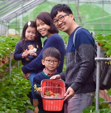 Taiwan: Hotel Celebrates Strawberry Season With Strawberry Room Package - Accidental Travel Writer | Asian Travel | Scoop.it