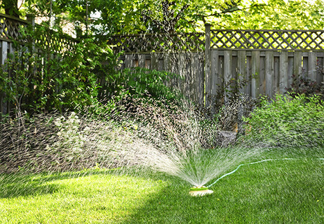 Lawn care & irrigation services in Ocala FL by Majestic eScapes, LLC | Majestic eScapes, LLC | Scoop.it