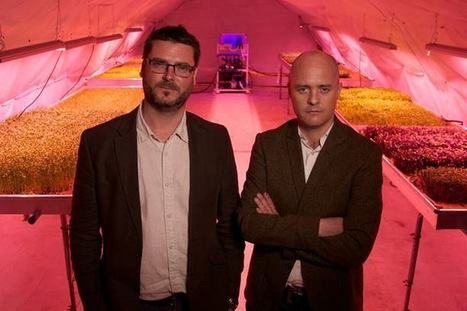 Urban farming goes underground in London | Real Estate Plus+ Daily News | Scoop.it