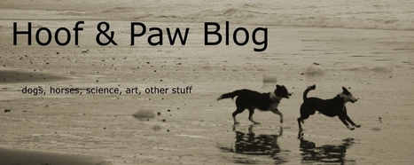 Hoof & Paw: Animal welfare FAIL from a supposed skeptic | Animals R Us | Scoop.it