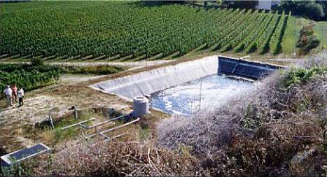 Utilisation des eaux usées des chais pour l'irrigation du vignoble | Le Vin et + encore | Scoop.it