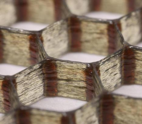 3D Printing Material Mimics Balsa Wood - 3D Printing Industry | 3D Printing Industry | Scoop.it
