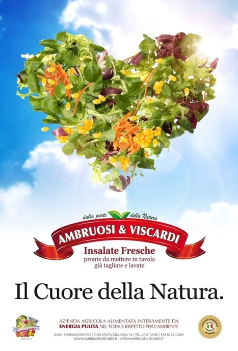 Fresh GREEN Salads from Le Marche: Ambruosi e Viscardi, Massignano | Le Marche and Food | Scoop.it