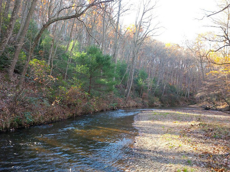 Marylanders need to speak up for open space   Suburban Land Trusts   Scoop.it