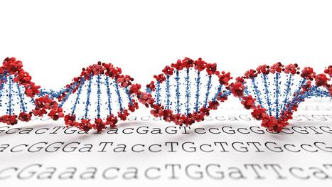 Deuxième session du MOOC Inria-uTOP «Bioinformatique : génomes et algorithmes» | les sciences de lestoile | Scoop.it