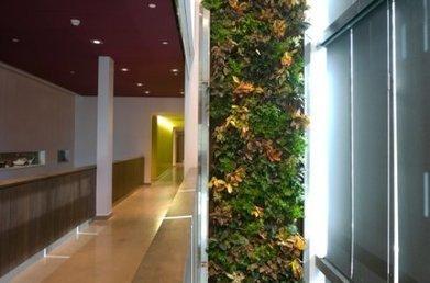 La Maison du développement durable dévoile sa programmation ... | Développement durable et efficacité énergétique | Scoop.it