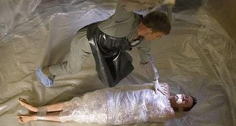 Et si Dexter ... avait choisi Bâches Direct qu'aurait il acheté ? | bricolage-professionnels | Scoop.it