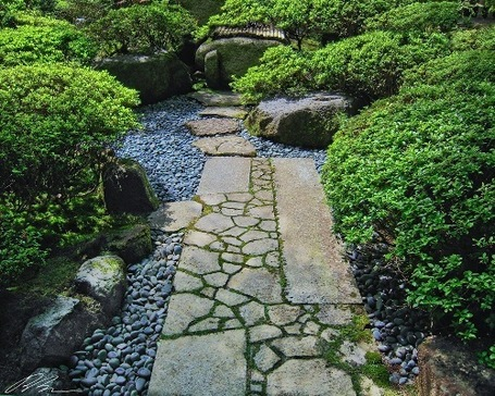 Small Japanese Garden Small Garden Landscape Design | Vertical ...