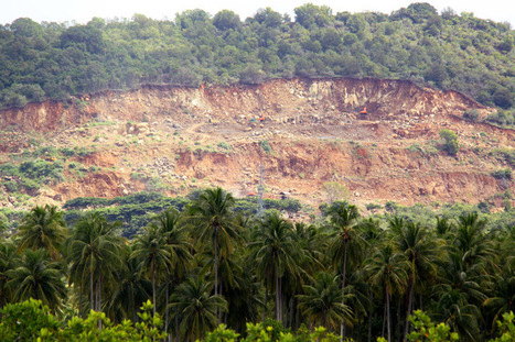 E. Kalimantan to Stop Issuing Mining Permits in Forests - The Jakarta Globe   Forestry   Scoop.it