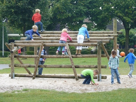 Groene Schoolpleinen: Een wetenschappelijk onderzoek naar de effecten voor basisschoolleerlingen | Kinderen en de natuur | Scoop.it