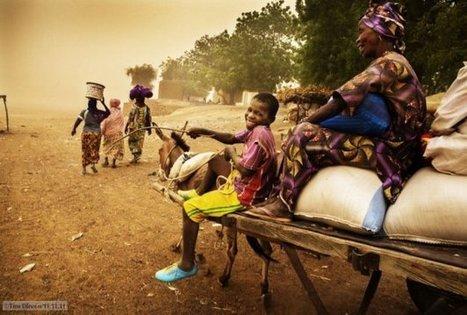 Mali : « La pension ? Je ne connais pas »   Actualité économique et sociale en Afrique sub-saharienne   Scoop.it