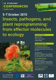 #EffecTours2015 Insects, pathogens, and plant reprogramming: from effector molecules to ecology, Tours, France, October 5-7, 2015 | Food Security | Scoop.it