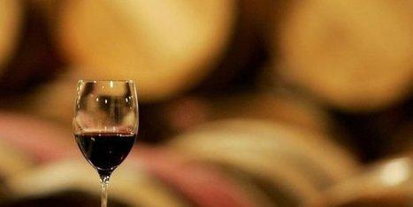 Le créateur du plus cher des vins de Bordeaux condamné pour escroquerie | Le Vin en Grand - Vivez en Grand ! www.vinengrand.com | Scoop.it