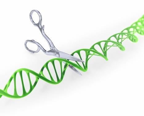 El origen de CRISPR-Cas contado por un microbiólogo y un genetista | Educacion, ecologia y TIC | Scoop.it