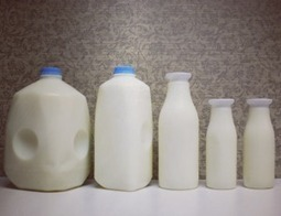 Want Strong Bones? Ditch the Dairy and Employ These 5 Strategies | Life Style | Scoop.it