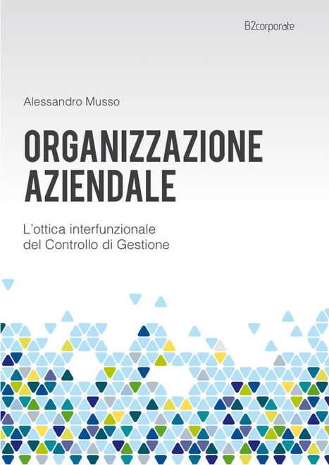 Organizzazione Aziendale - L'ottica interfunzionale del Controllo di Gestione | managerial accounting, startup, financing, marketing, energy | Scoop.it