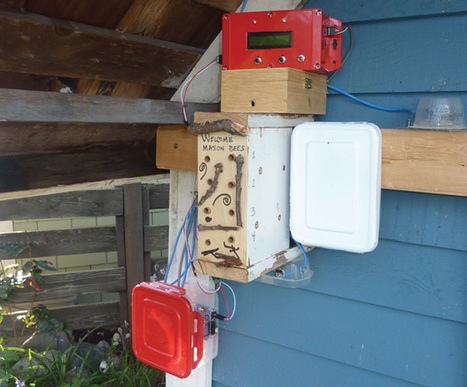 How to Build an Electronic Bee Counter | Arduino, Netduino, Rasperry Pi! | Scoop.it