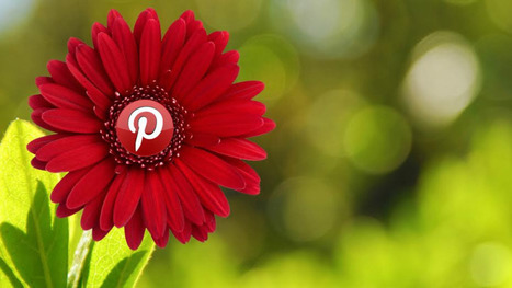 How to get the most out of Pinterest's Guided Search | Into the Driver's Seat | Scoop.it
