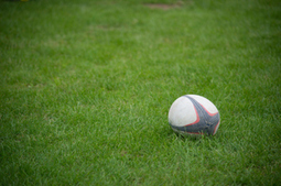 School of hard knocks: the effects of rugby on long-term health - Sport - NZ Herald News | Physical Education Resources | Scoop.it