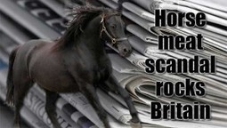 Hacks Making A Huge Fuss Out Of That Horsemeat Scandal | Stirring Trouble Internationally | News From Stirring Trouble Internationally | Scoop.it