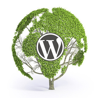 WordPress valloitti verkon: 20% nettisivuista WordPress -alustalla. | Working With Social Media Tools & Mobile | Scoop.it