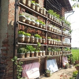 Self watering vertical garden with recycled water bottles | Gardening in the City | Scoop.it