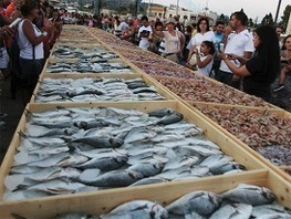 Japan and Korea to invest in seafood sector in India | Aquaculture Directory | Aquaculture Directory | Scoop.it