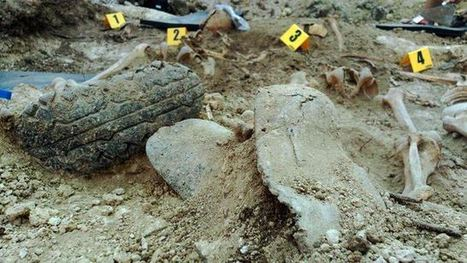España: El Gobierno ha escogido olvidar a las víctimas para proteger al franquismo | La R-Evolución de ARMAK | Scoop.it