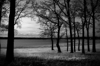 Digital Infrared Photography Tutorial | AB Design Fotos | Scoop.it