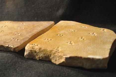 Prehistoric Spider Footprints | Geology | Scoop.it