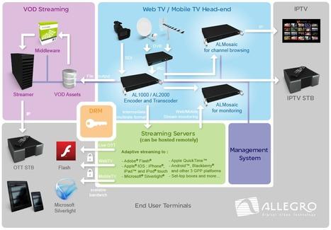 Allegro: OTT Adaptive Streaming for Adobe Flash, Apple HLS, Google WebM, MS Smooth Streaming | Operator CDN | Scoop.it