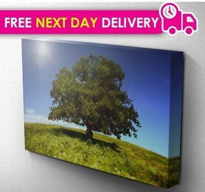 Canvas Printing | Digital Marketing Tips - SEO | SMO | PPC | Scoop.it