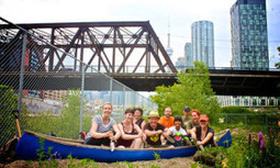 Starting Small Pays Big Dividends in the Urban Green Revolution | EcoWatch | Scoop.it