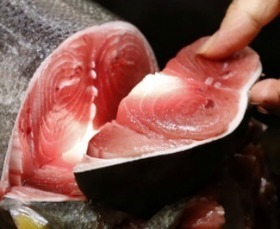 59% of the 'Tuna' Americans Eat Is Not Tuna | Foodie | Scoop.it
