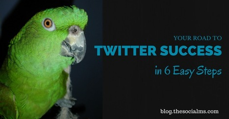 Your Road to Twitter Success in 6 Easy Steps | Social Influence Marketing | Scoop.it