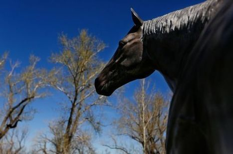 How horse racing's first Triple Crown winner came to be buried in Wyoming | The Jurga Report: Horse Health, Welfare, and Care | Scoop.it