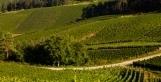 L'Unesco doit-elle classer le vignoble de Champagne ? | Wine & Web | Scoop.it