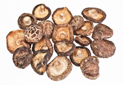 Indiana University Study Shows Blend of 6 Mushrooms Fight Breast Cancer by Isaac Eliaz, M.D., L.Ac., M.S. - Cancer - InsidersHealth.com | Natural Cancer Options | Scoop.it