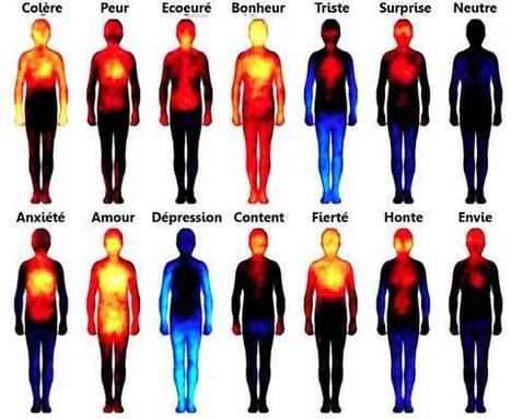 Une nouvelle étude démontre l'influence des émotions sur nos corps! | creativity | Scoop.it
