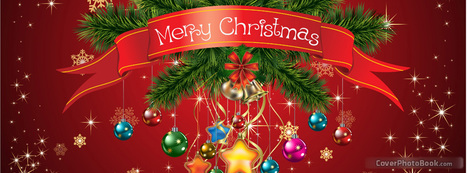 Wish You Merry Christmas From Avi Naturals! | 100% Pure and Orgnic Carriers Oils | Scoop.it