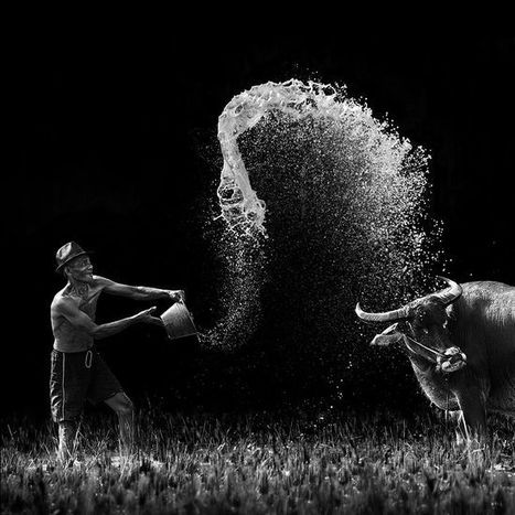 Beautiful Examples Of Action Photography - Noupe   iconoMix   Scoop.it