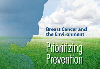 Prevention as Cure: Breast Cancer and the Environment | YOUR FOOD, YOUR HEALTH: #Biotech #GMOs #Pesticides #Chemicals #FactoryFarms #CAFOs #BigFood | Scoop.it