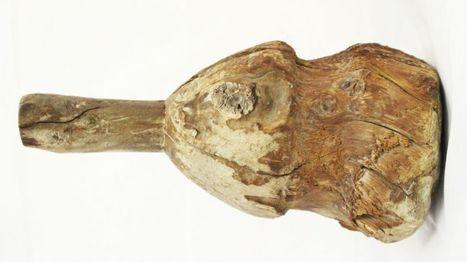 Ancient Egyptian tool found in Derbyshire wardrobe - BBC News   Egiptología   Scoop.it