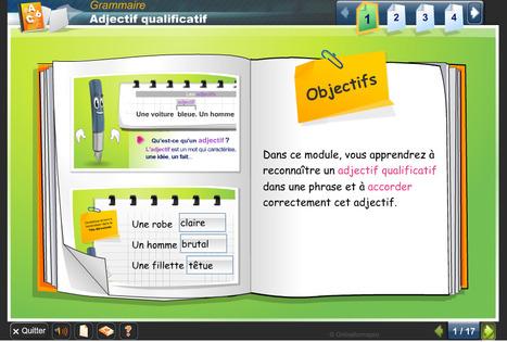 Activités interactives : demos de grammaire | French 1-4 | Scoop.it