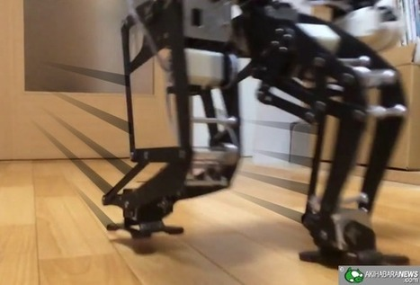 CUTE: Headless Robot Chasing a Laser Pointer | AI, NBI, Robotics & Cybernetics & Android Stuff | Scoop.it