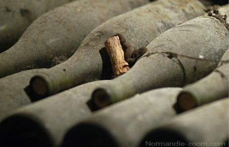 Les traces du plus vieux vin du monde découvertes - SciencePost | Monde antique | Scoop.it