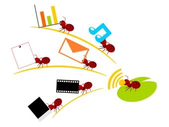 Swarm Intelligence In Marketing! | Social Foraging | Scoop.it